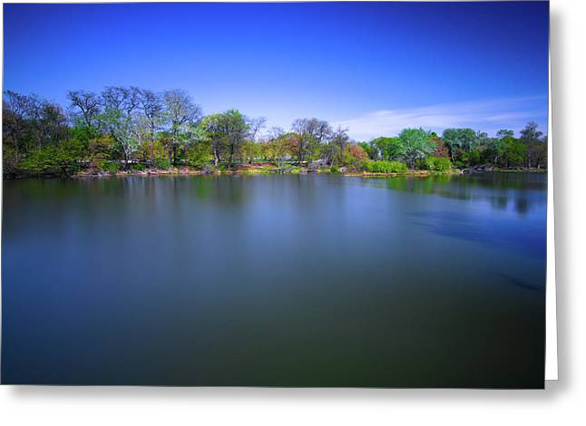 Jackson Park Greeting Card by Jonah  Anderson