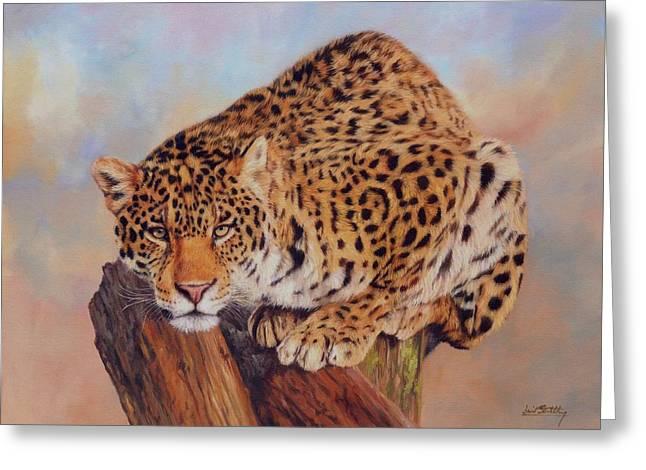 Jaguar Greeting Card by David Stribbling