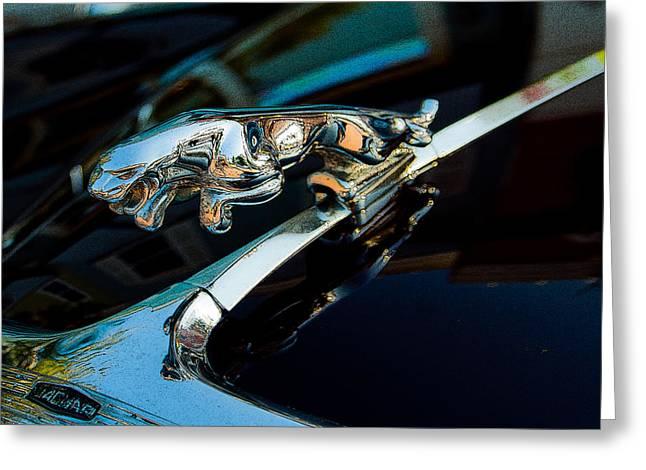 Jaguar Jaguar Greeting Card