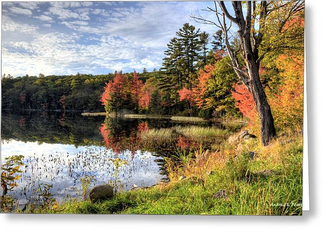 Jamie's Pond Greeting Card
