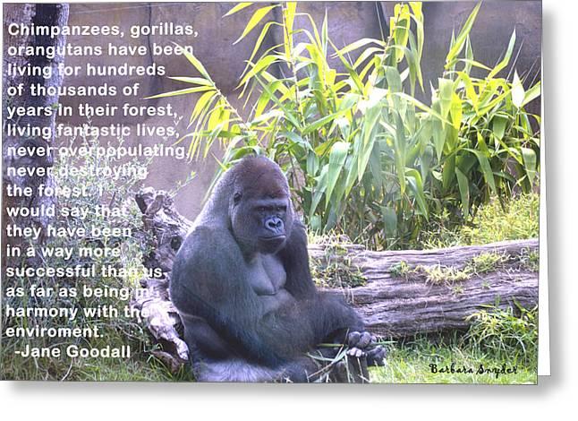 Jane Goodall Gorilla Greeting Card by Barbara Snyder