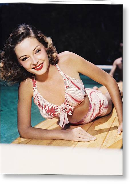 Jane Greer Greeting Card by Silver Screen