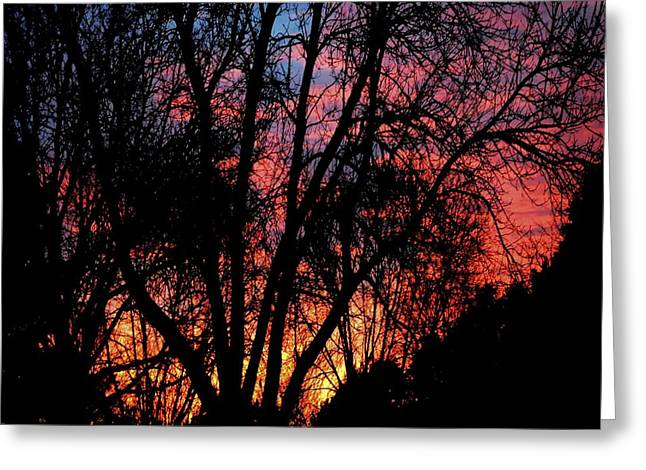 Greeting Card featuring the photograph January Dawn by Luther Fine Art