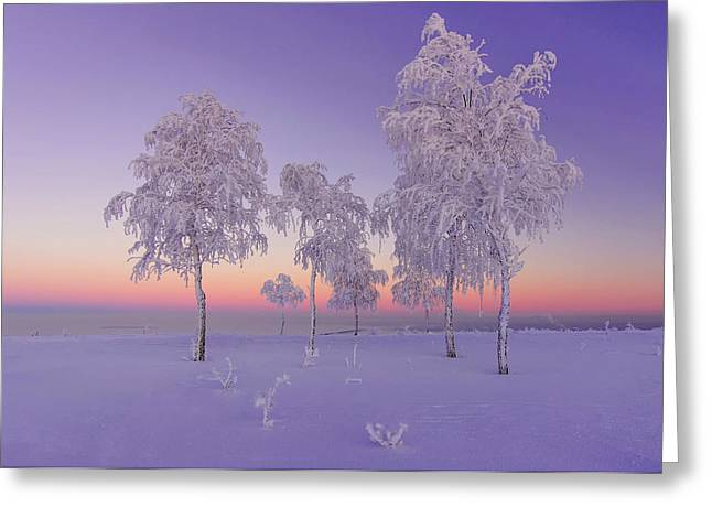 January Evening Greeting Card