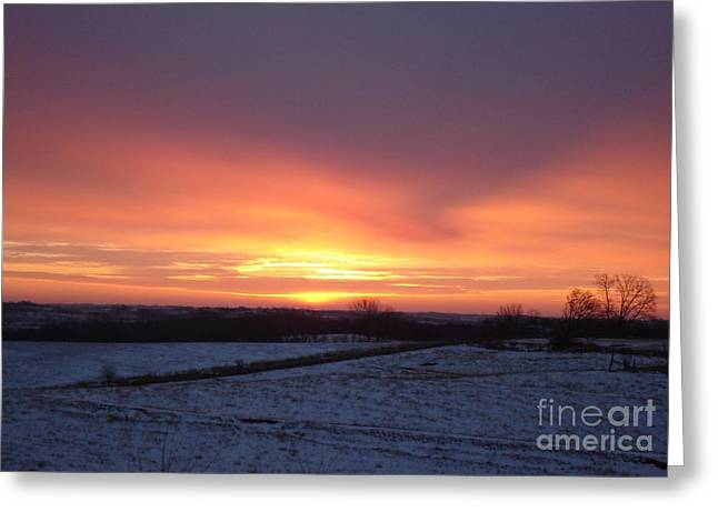 January Sunrise Greeting Card by J L Zarek