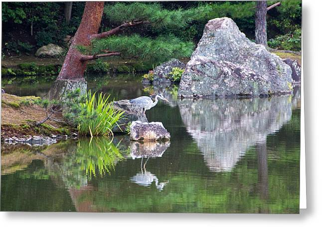 Japanese Crane Upon The Water Greeting Card by Laura Palmer