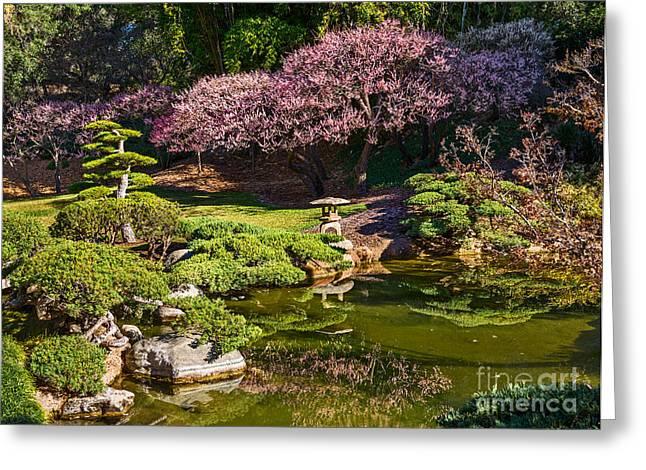 Japanese Garden Blossom Greeting Card