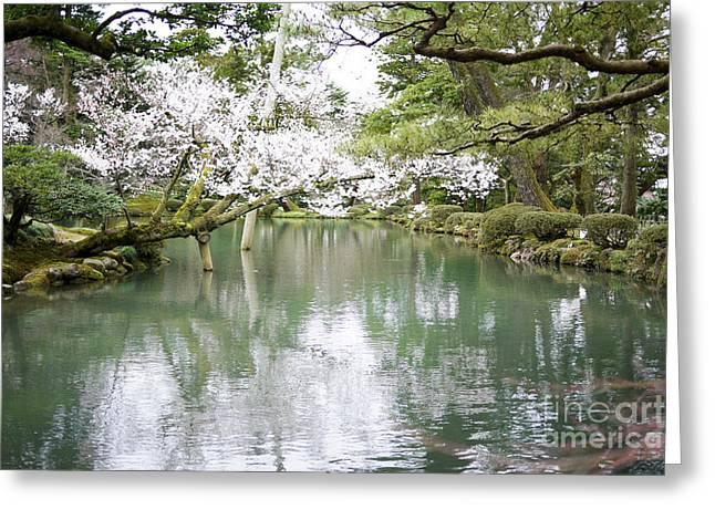 Japanese Garden  Greeting Card by Moshe Torgovitsky