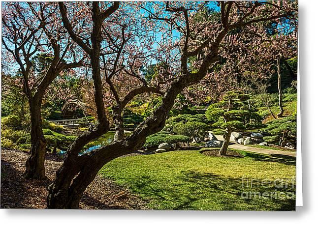 Japanese Spring Garden Greeting Card