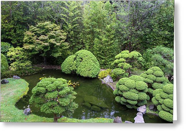 Japanese Tea Garden, Golden Gate Park Greeting Card by Susan Pease