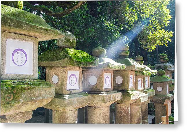 Japanese Toro Lantern For The Dead Found In Nara Japan Greeting Card by Laura Palmer