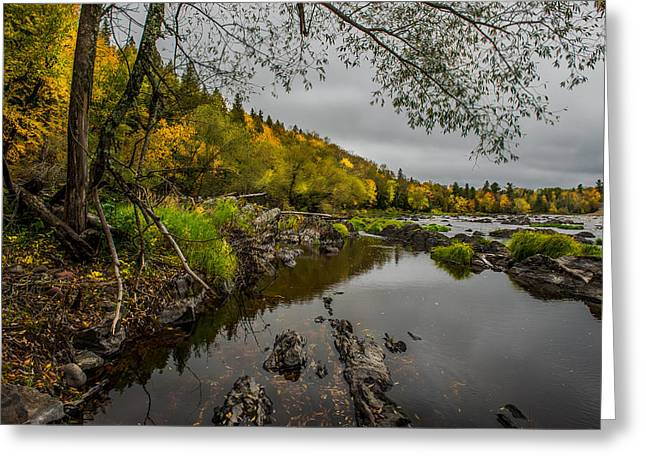 Jay Cooke State Park Greeting Card by Paul Freidlund