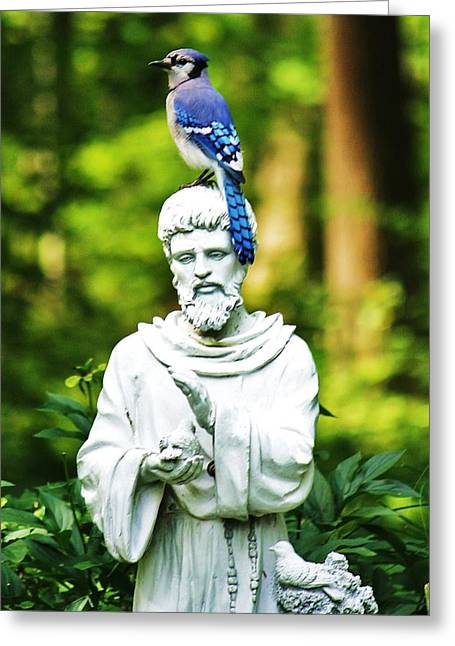 Jay On Statue Greeting Card