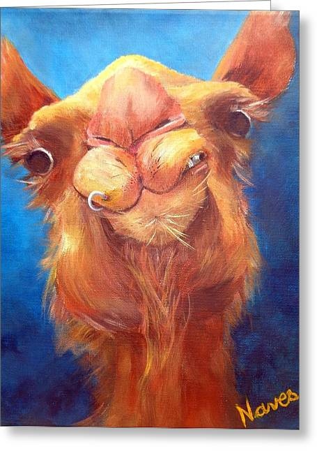 Jay Z Camel Greeting Card by Deborah Naves