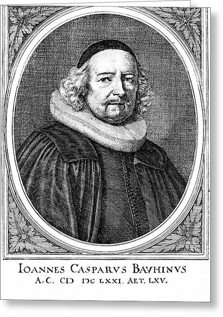 Jean Caspar Bauhin Greeting Card by Universal History Archive/uig