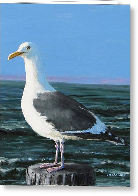 Jeff The Seagull Greeting Card by Jack Skinner