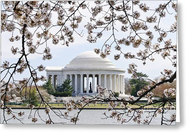 Jefferson Memorial And Cherry Blossoms Greeting Card by Oscar Gutierrez