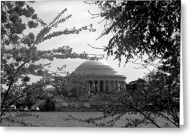 Jefferson Memorial Greeting Card by Kimber  Butler