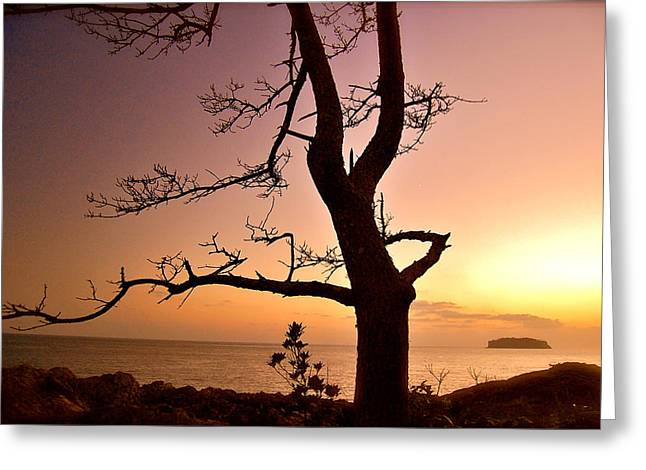 Jeju Sunset Greeting Card by Yen