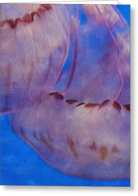 Jellies Greeting Card by Jack Zulli