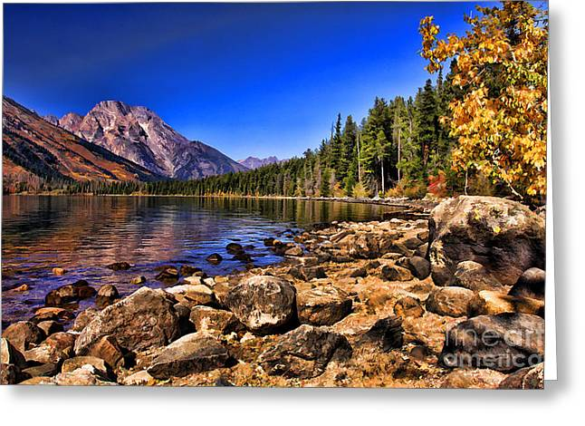 Jenny Lake Greeting Card by Clare VanderVeen
