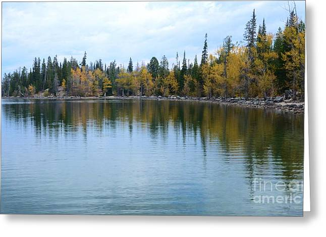 Jenny Lake Greeting Card by Kathleen Struckle