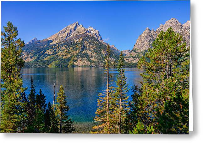 Jenny Lake Overlook Greeting Card by Greg Norrell