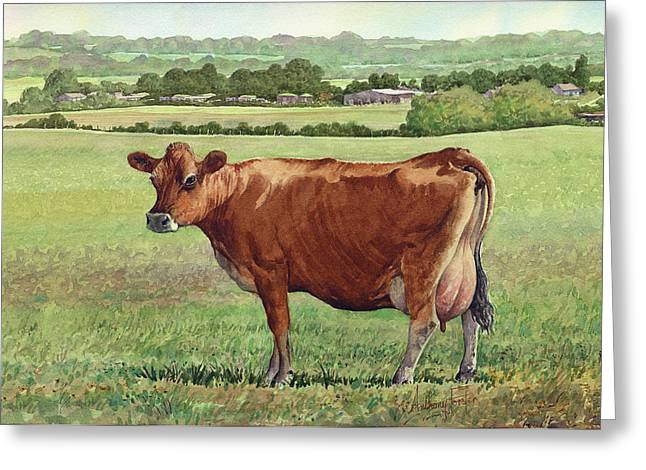 Jersey Cow Greeting Card by Anthony Forster