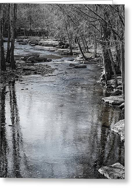 Jessamine Creek Greeting Card by Diana Boyd