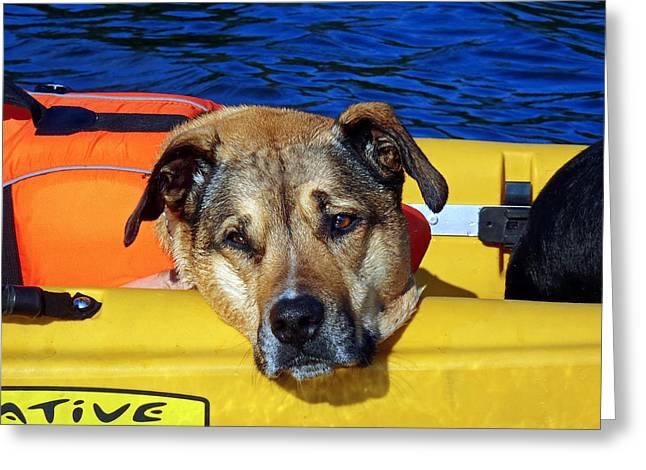 Jessie Kayaking Greeting Card
