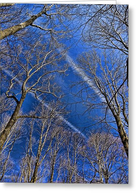 Jet Trails Greeting Card by Robert Culver