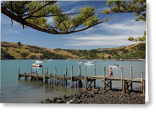 Jetty, Akaroa, Banks Peninsula Greeting Card by David Wall