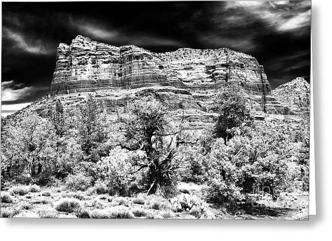 Jewel In The Desert Greeting Card by John Rizzuto