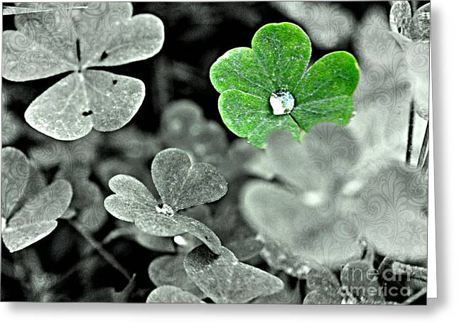 Jeweled Clover Greeting Card