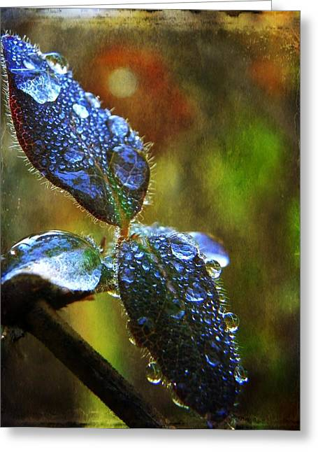 Jeweled Leaves Greeting Card