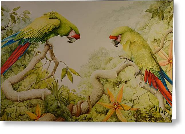 Jewels Of The Rain Forest  Military Macaws Greeting Card