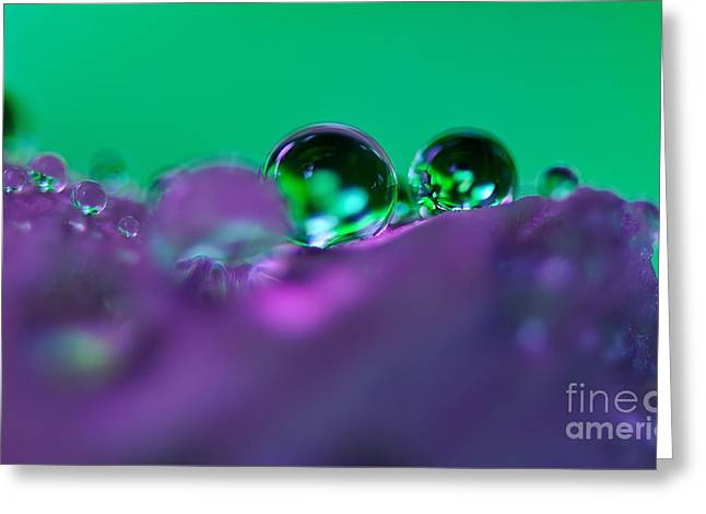 Jewels On A Petal Greeting Card by Kaye Menner