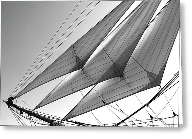 Jib Sails Greeting Card
