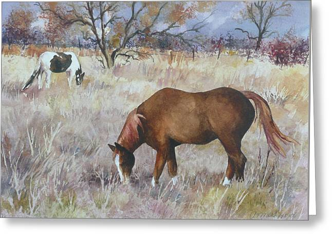 Jill's Horses On A November Day Greeting Card by Anne Gifford