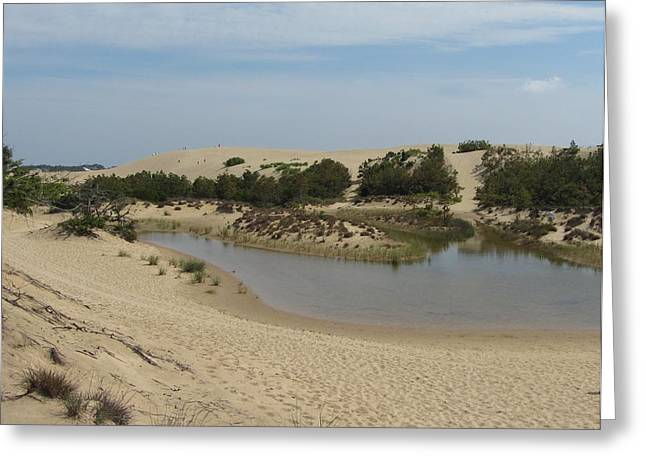 Greeting Card featuring the photograph Jockey's Ridge 3 by Cathy Lindsey