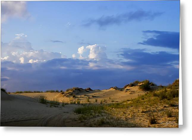Jockey's Ridge State Park Greeting Card
