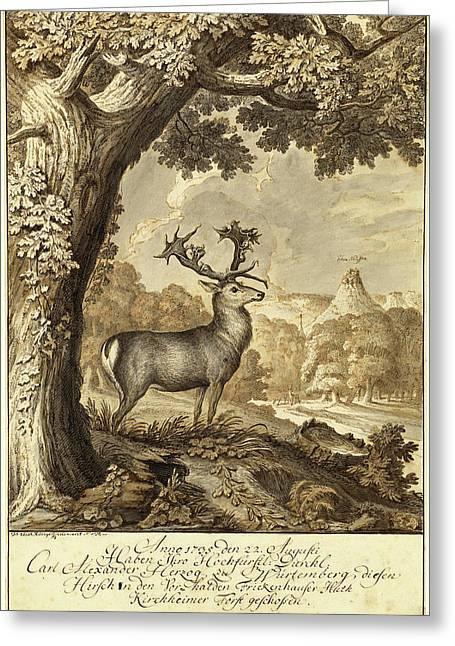 Johann Elias Ridinger, German 1698-1767 Greeting Card