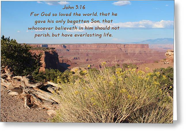 John 3-16 Canyonlands N P  Greeting Card by Nelson Skinner