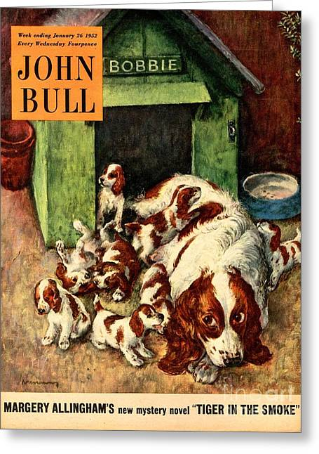 John Bull 1952 1950s Uk Dogs Puppies Greeting Card by The Advertising Archives