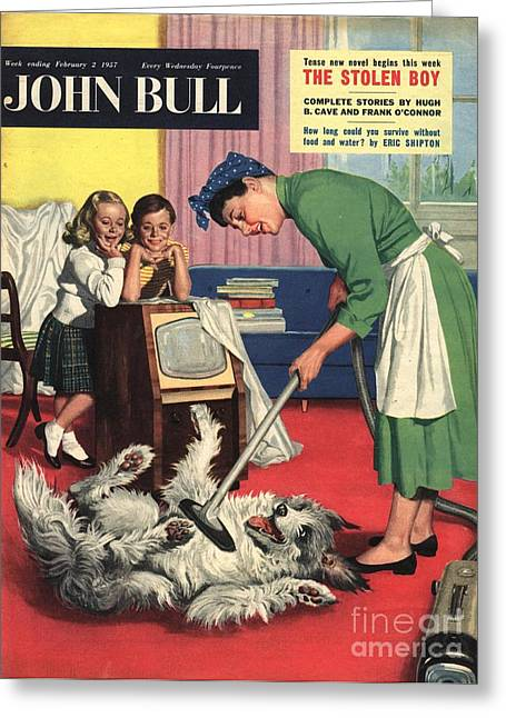 John Bull 1957 1950s Uk Dogs Cleaning Greeting Card by The Advertising Archives