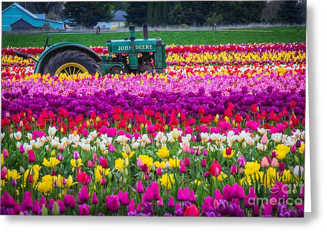 John Deere In Spring Greeting Card by Patricia Babbitt