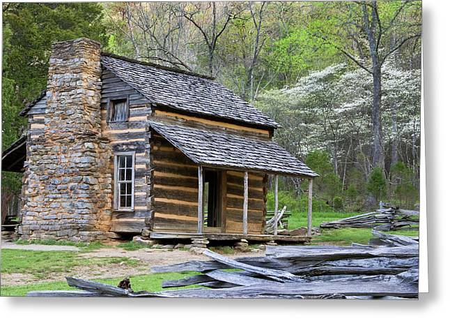 John Oliver Cabin In A Forest, Cades Greeting Card by Panoramic Images