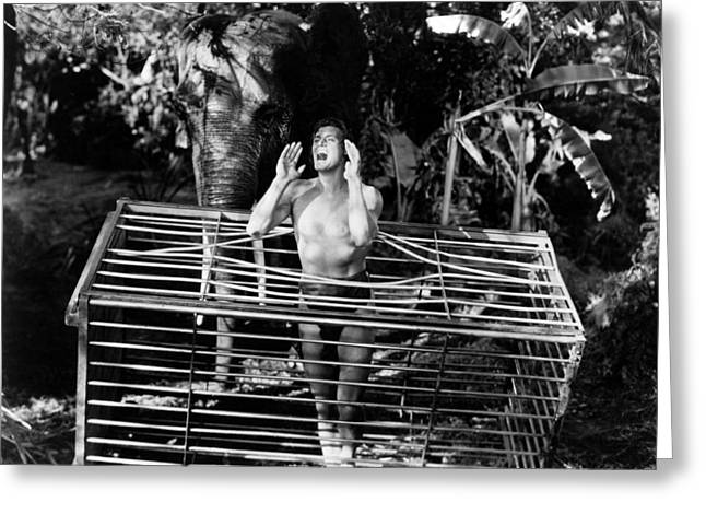Johnny Weissmuller In Tarzan And The Amazons  Greeting Card