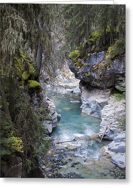 Johnsons Canyon Greeting Card