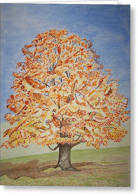 Jolanda's Maple Tree Greeting Card